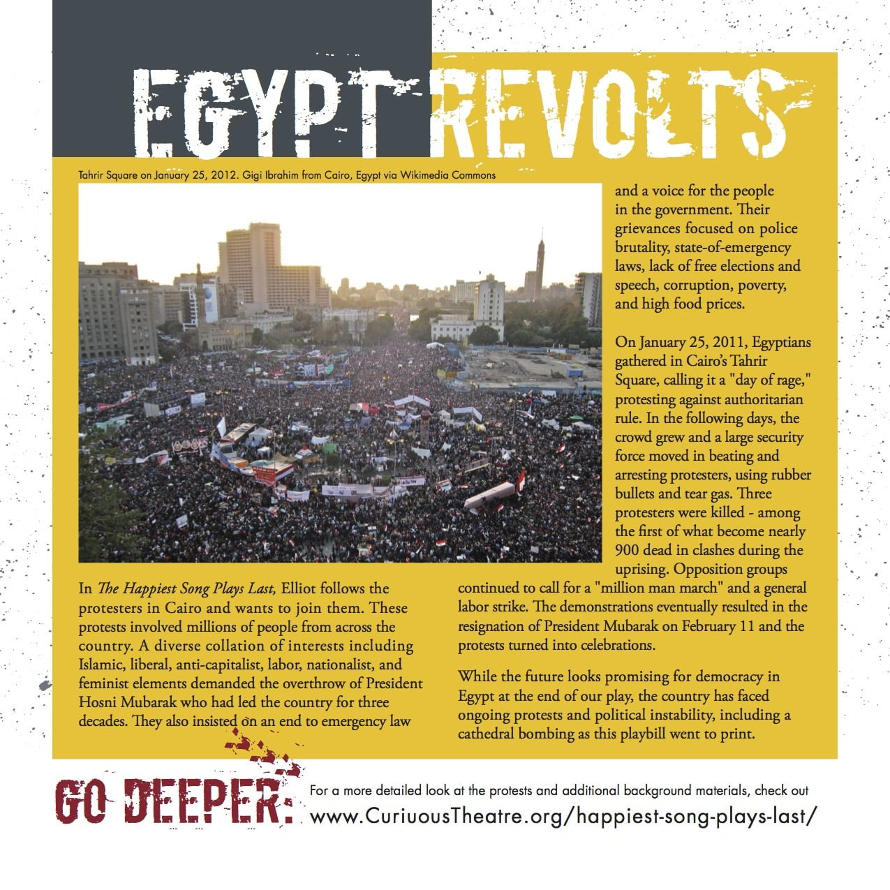 egypt-revolts